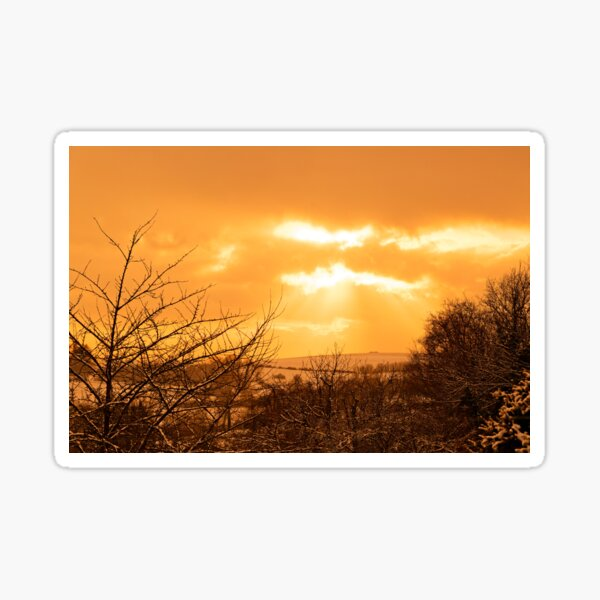 Yellow landscape, sunset and trees Sticker