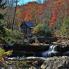 Autumn In West Virginia  by Lanis Rossi