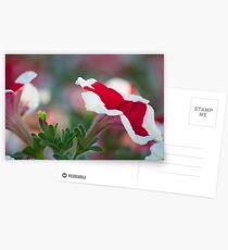 Flower languages...Got Featured Work Postcards