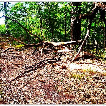 dead tree by Alexander589