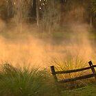 The Fence  by Karl F Davis