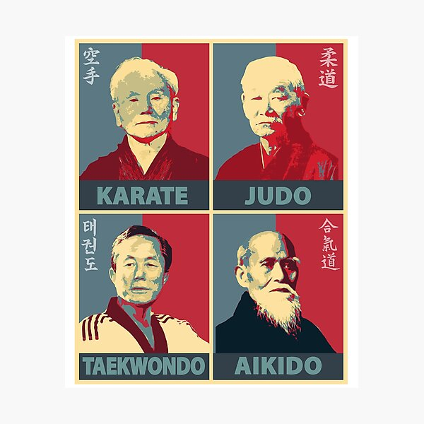 Martial Arts Founders Photographic Print