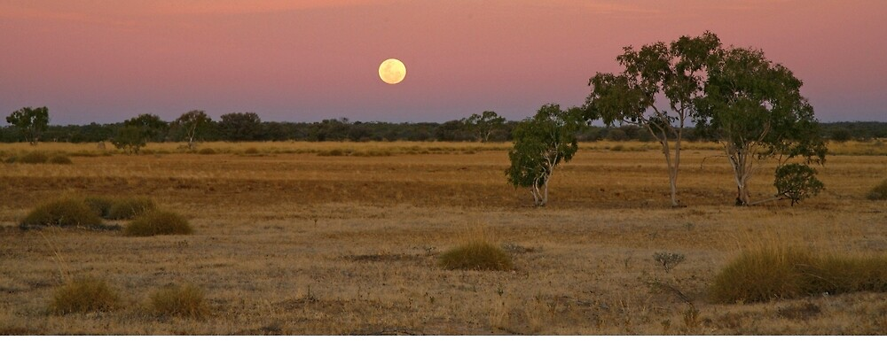 Moonrise Bladensberg National Park  by Rob Drummond