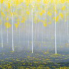 Yellow Forest  by Herb Dickinson