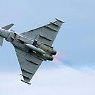 Typhoon Euro fighter by Martyn Franklin