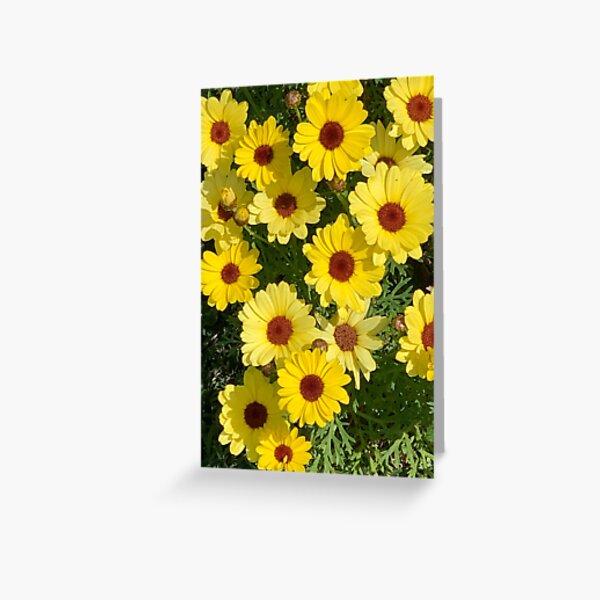 Yellow Daisies 1 Greeting Card