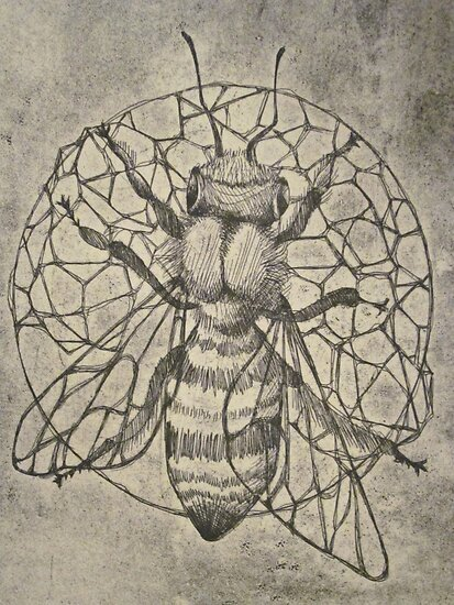 Bee etching  by amylouised
