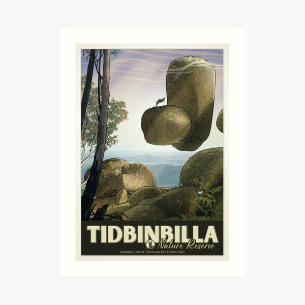 Tidbinbilla Art Print