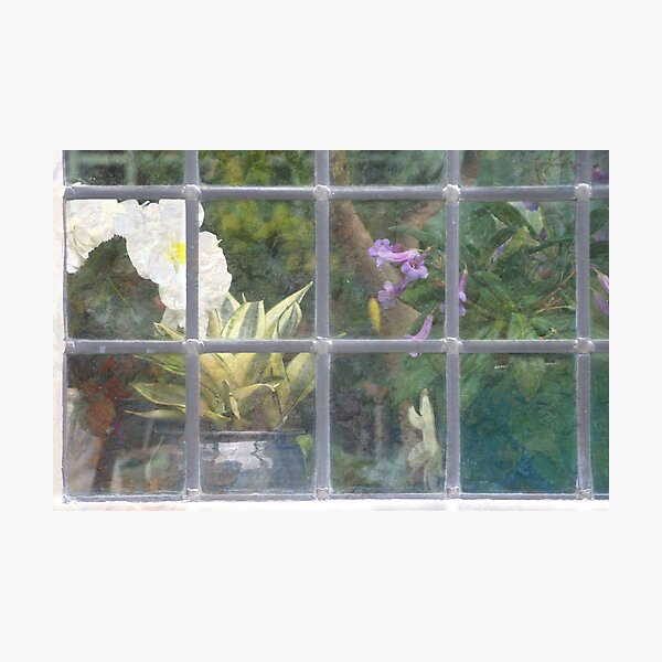 Window Shapes Photographic Print