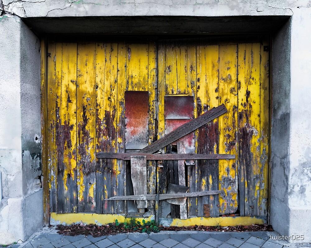 Vibrant Wooden Door by twister025
