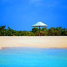 Barbuda Blues by Carol Barona