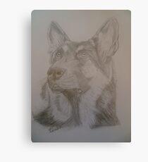 Gunner German Shepherd Dog Canvas Print