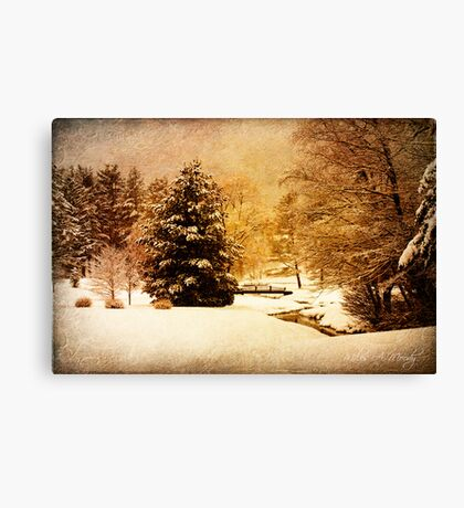 Whispers in Silence Canvas Print