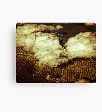 Hovering Canvas Print
