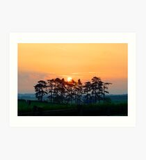 Danebury Ring Sunrise Art Print