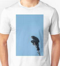 of all he surveys Unisex T-Shirt