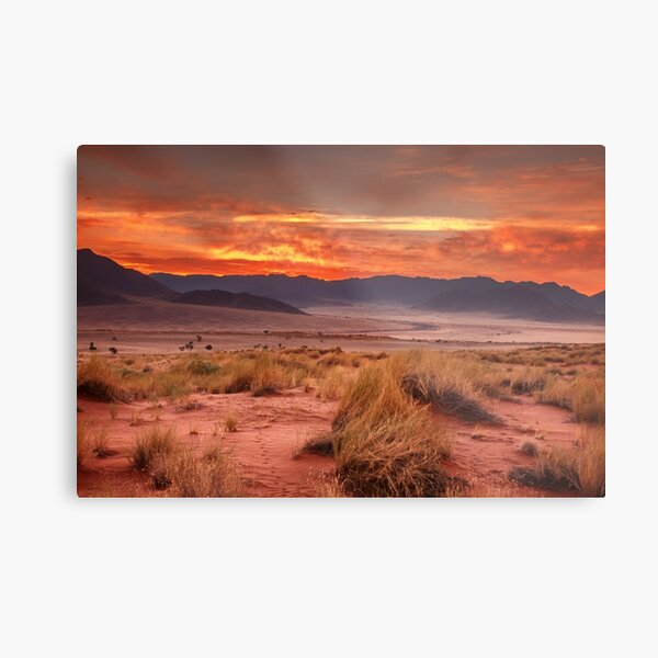 Day is created at Wolwedans Metal Print
