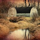 The Old Dairy Farm by Heather Haderly