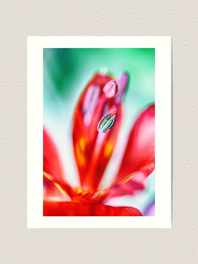 Alternate view of Flower Mystical  Art Print
