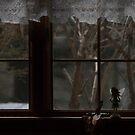 It Looks Just Like a Window by Mandy Kerr