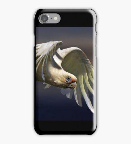 bird's eye view iPhone Case/Skin