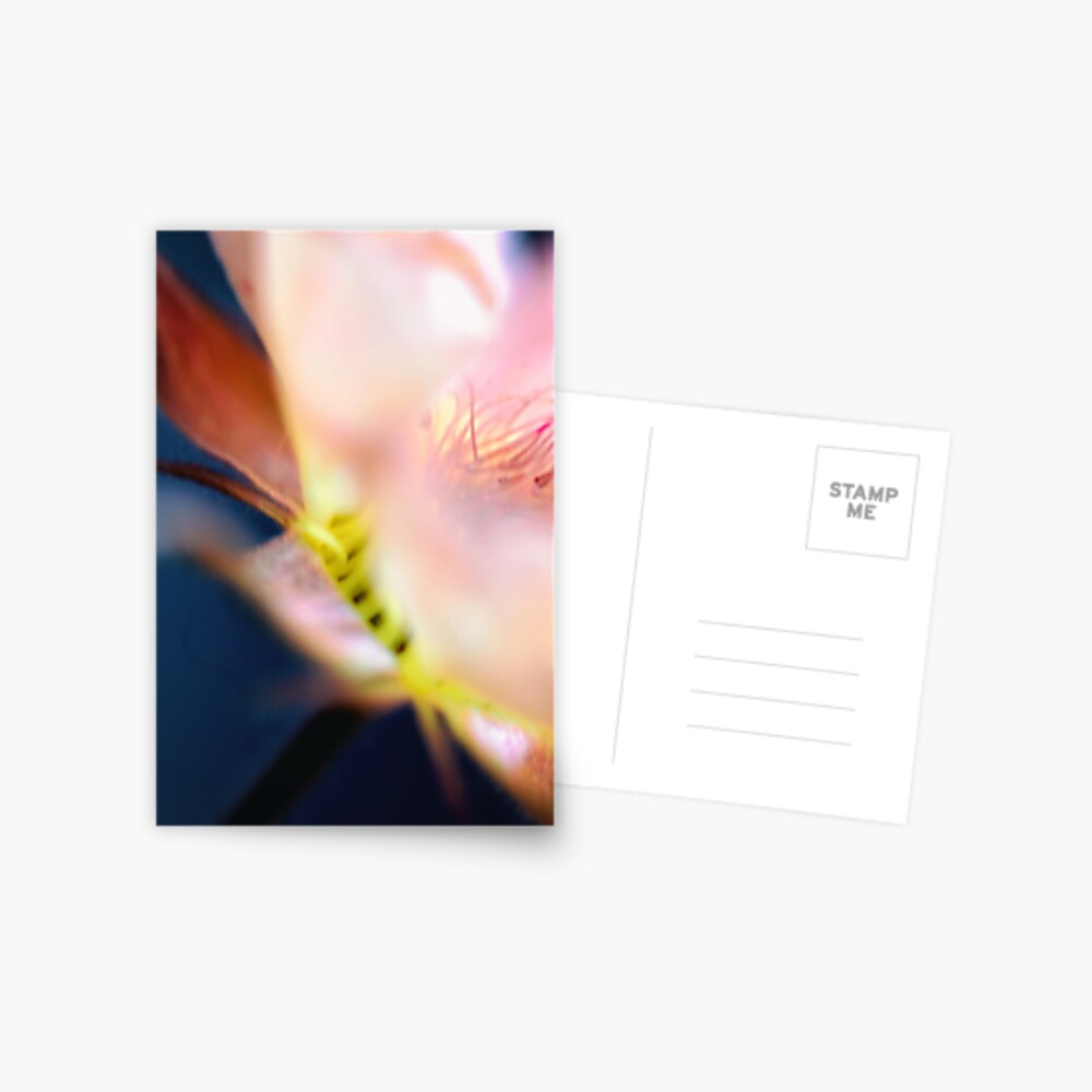 Flower Mystical Postcard