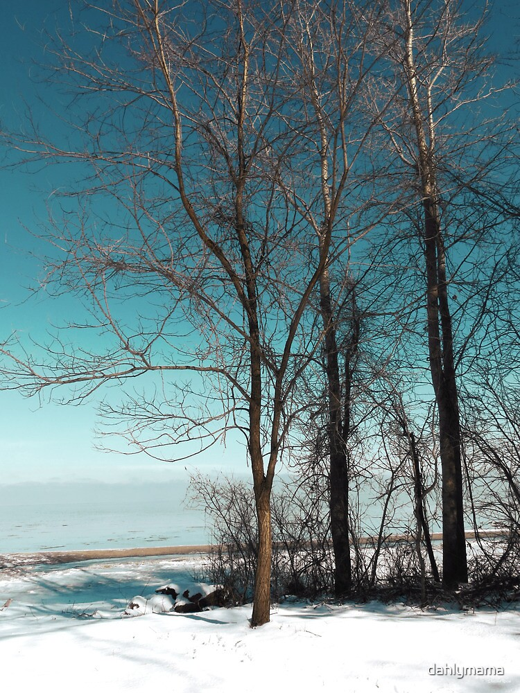 Frozen Lake Erie At Old Woman Creek by Shawna Rowe