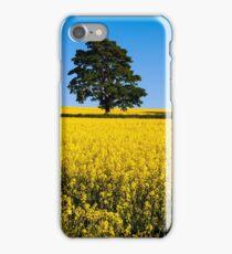 Rapeseed Field, Northern Ireland, Hillsbough, Co. Down iPhone Case/Skin