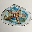 Starfish Clamshell Art by Sharon A. Henson