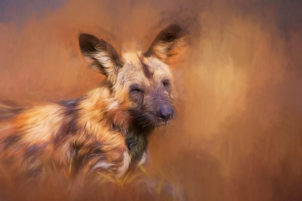 Wild Dog! by Lyn Darlington