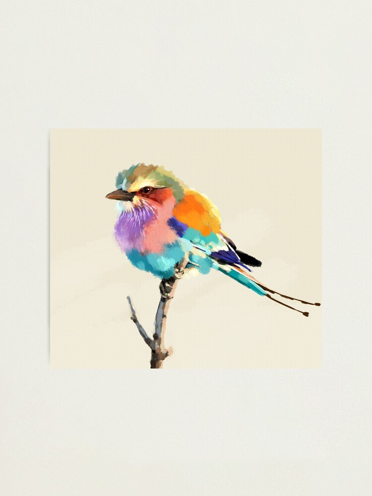 Alternate view of Gay Finch Photographic Print