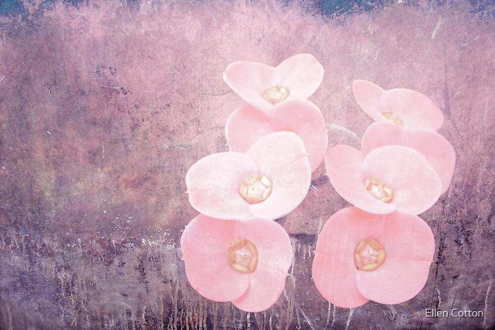 Indulgence by Ellen Cotton