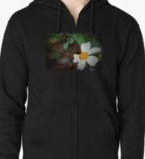 Dewdrop on wildflower T-Shirt