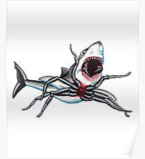 Funnel Web Shark Poster