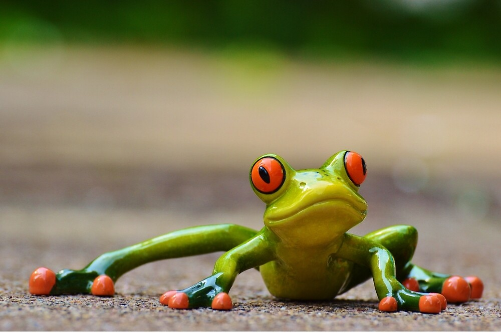 Funny frog by soid