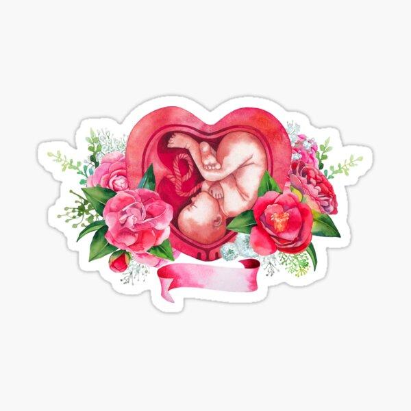Watercolor fetus inside the womb Sticker