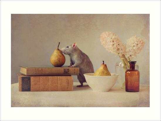 Jimmy by Ellen van Deelen
