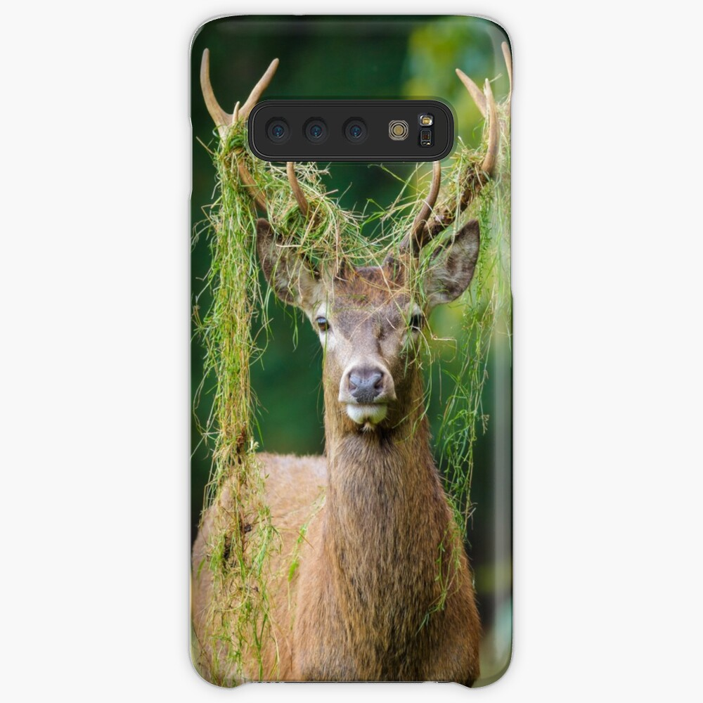 Red Deer Stag Case & Skin for Samsung Galaxy