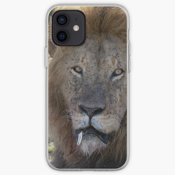 Portrait of Fang iPhone Soft Case
