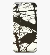 Pigeon in the Tree iPhone Case