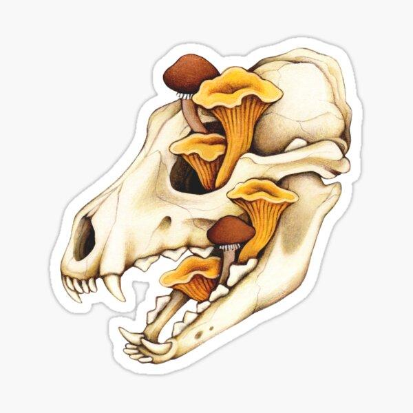 Vulture Culture Canine Skull Sticker