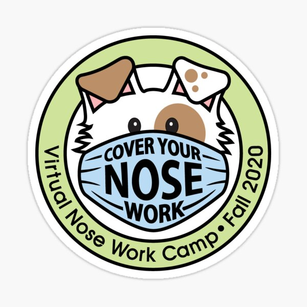 Virtual NW Camp Stickers & Buttons Sticker