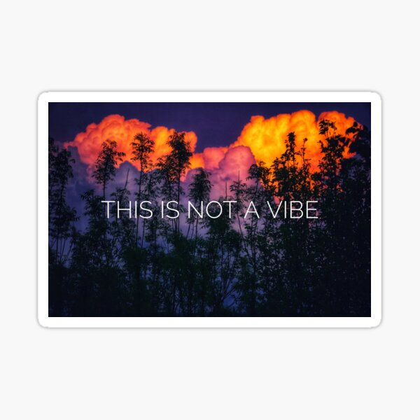 This is Not a Vibe Sticker
