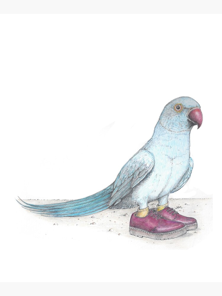Indian Ringneck Parrot in Derby Shoes by JimsBirds