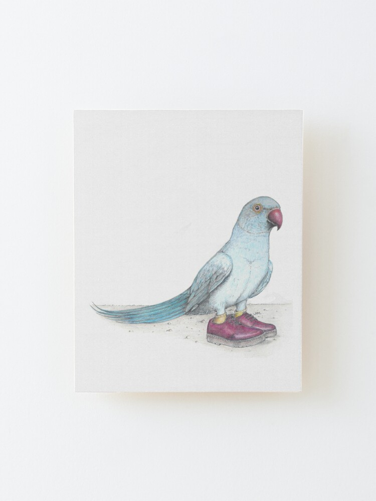 Alternate view of Indian Ringneck Parrot in Derby Shoes Mounted Print