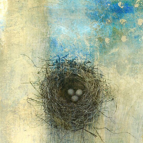 Bird's Nest  by Elena Ray