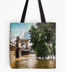 River and bridge during flood Tote Bag