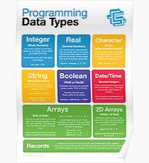 Programming Data Types (Coding Literacy) Poster