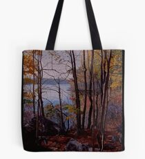 Lincoln Woods pond Tote Bag