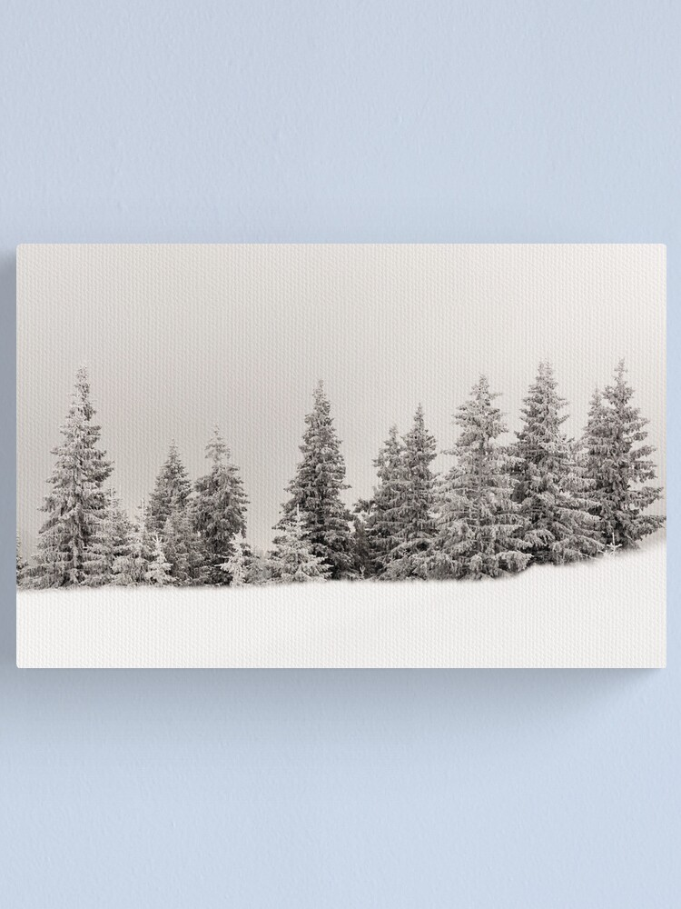 Alternate view of Winter colors Canvas Print